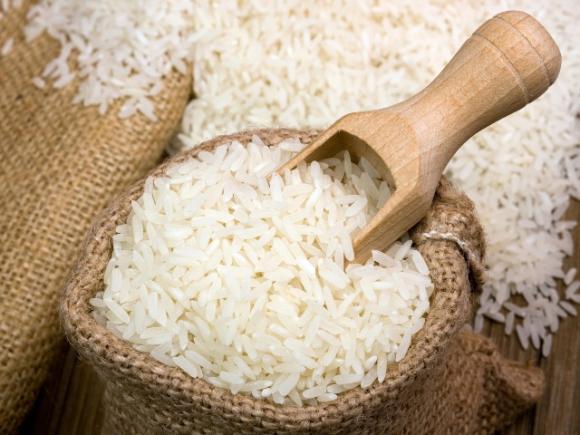 Calabozo produce un arroz de calidad