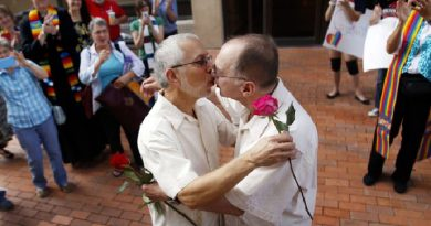 Parlamento alemán aprueba matrimonio homosexual con 393 votos a favor