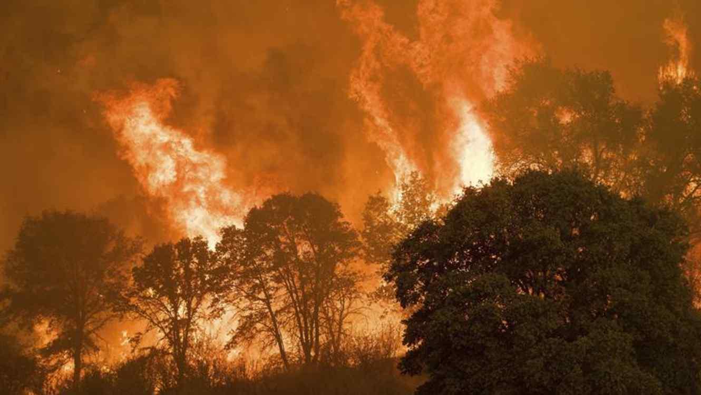 El fuego obligó a cerrar dos colegios y a evacuar a pacientes de dos hospitales en Sonoma