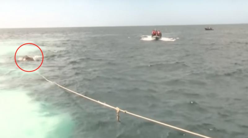 Tras cinco meses a la deriva en mar abierto, rescatan a dos mujeres y sus perros