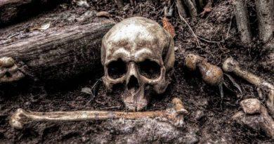 33 cuerpos han sido encontrados en tres fosas clandestinas en el estado mexicano de Nayarit