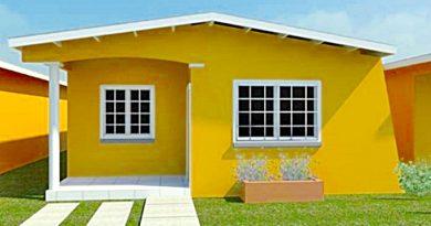Organicemos nuestra pequeña casa